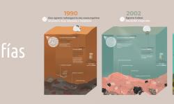 Servicio de infografía científica. NorArte Visual Science