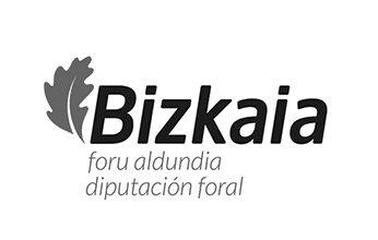 Logo Bizkaia. Foru aldundia. Diputación foral. Clientes de NorArte - Visual Science