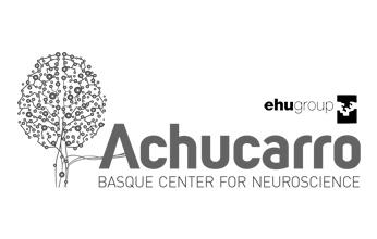 Achucarro