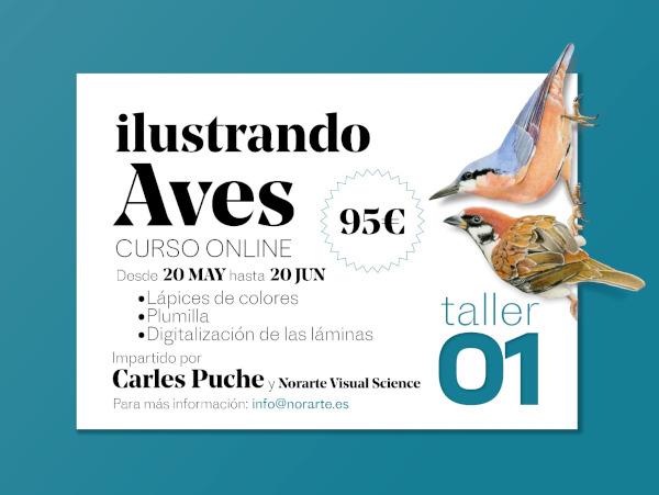 Cartel. Taller 01. Ilustrando Aves con Carles Puche. curso online de ilustración naturalista