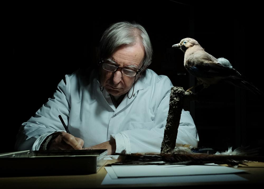 Carles Puche.Ilustración científica.  Curso dibujando aves